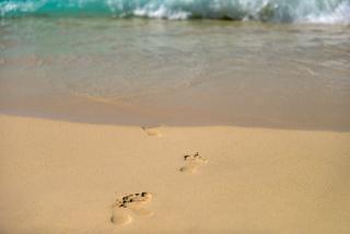 Footprints In Sand Walking Towards Sea